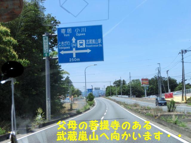 CIMG7091.jpg